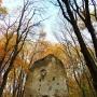 A tálodi pálos kolostor romjai Nagyvázsony és Pula között az erdőben