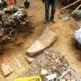 A pogányszentpéteri ásatás során előkerült leletek
