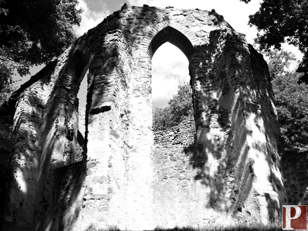 A salföldi pálos kolostor